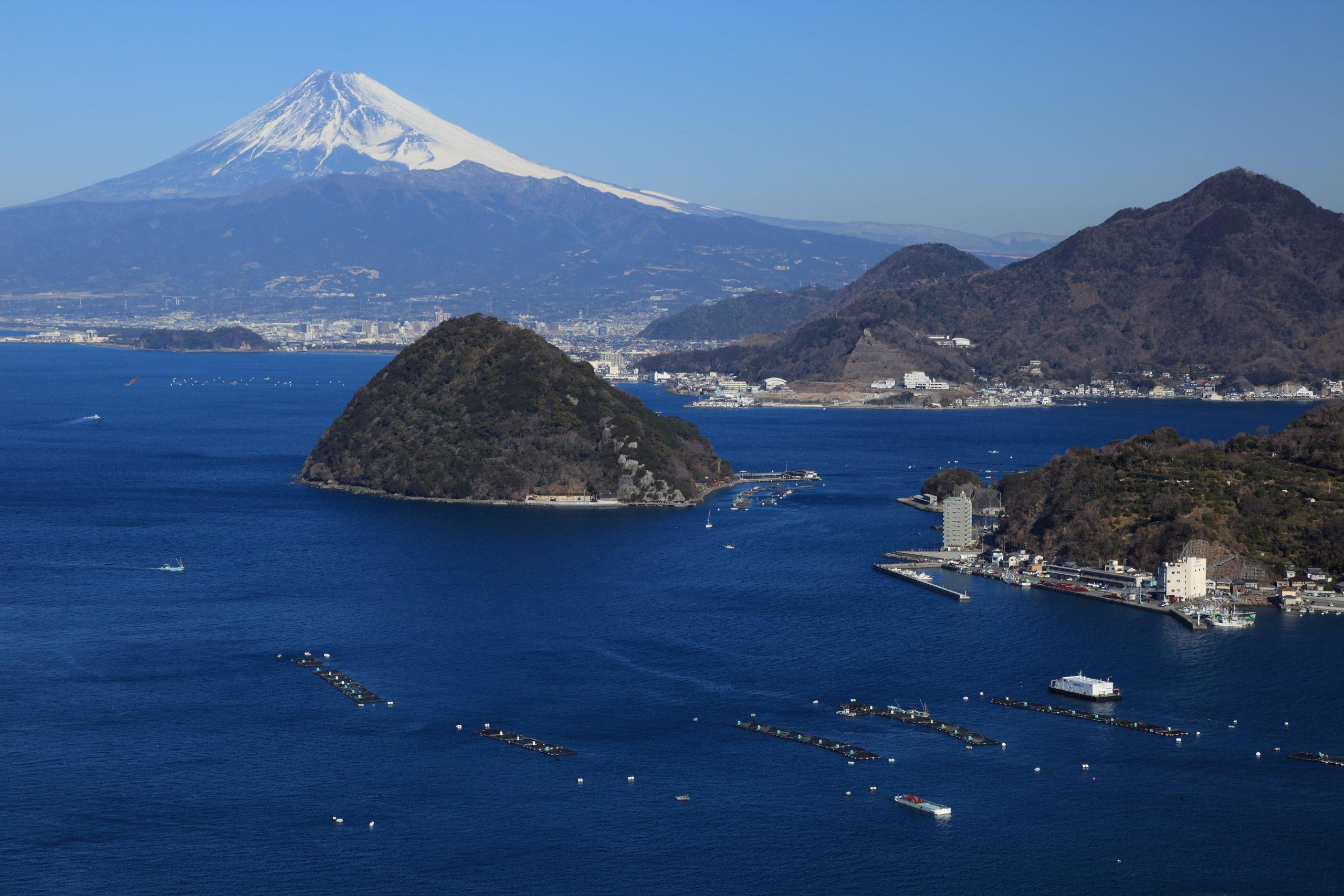 営業研修・経営改善によって 静岡県東部の事業者さまを支援します